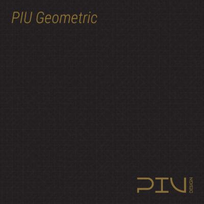 PIU Geometric